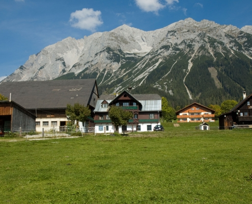 Organic Farm Rupbauer - Summer Holiday in Ramsau am Dachstein