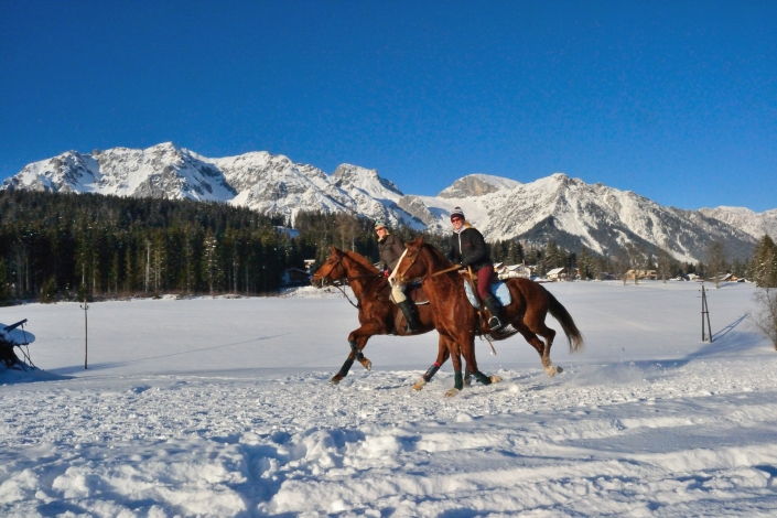 groomed riding and horse sledge trails in Ramsau am Dachstein - organic farm Rupbauer